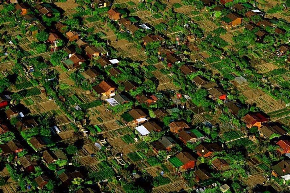 Horta comunitaria em Genebra na Suíça